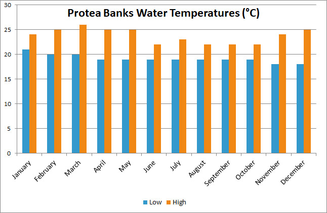 protea water temp
